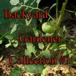 Seed Collection Backyard Gardener Variety Pack 1