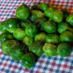 Long Island Improved Brussel Sprouts Seeds