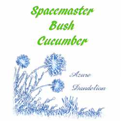 Spacemaster Bush Cucumber Seeds
