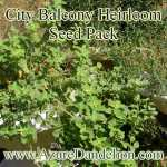City Balcony Heirloom Seeds Collection Pack