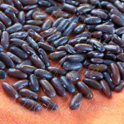 Brown Rice Bean Seeds