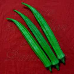 Dwarf Long Green Pod Okra Seeds