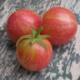 Pink Vernissage Tomato Seeds