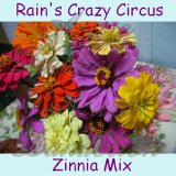 Rain's Crazy Circus Mix Zinnia Flower Seeds